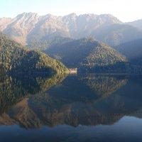 Озеро Рица. Утро. :: Нелли *