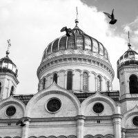 Храм Христа Спаителя :: Александр Аполонов