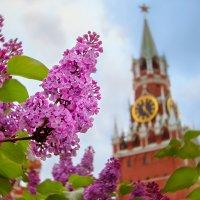 Московский май :: Александр Поляков