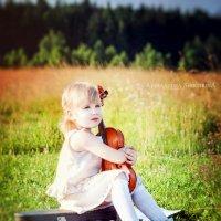 """Фотопроект """" Скрипка """" :: Александра Синичкина"""