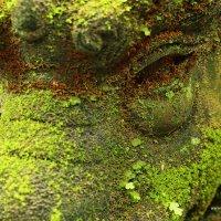 Глаз Ганеши, север Тайланда :: Святослав Липинский