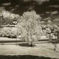 Покровский Хотьков монастырь :: Игорь Яковлев