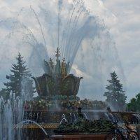 Воду включили! :: Яков Реймер