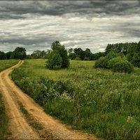 Весенний пейзаж. :: Елена Kазак