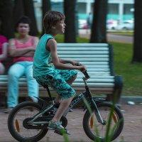 В парке :: Андрей Шаронов