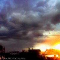 погода :: Елена Попова