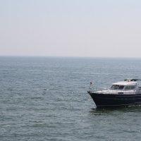 море :: виктория Берина