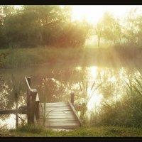 Про маленький мостик, что на соседском пруду.... :: Елена Kазак