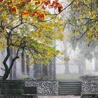 Ступени в осень :: Виктор Климов