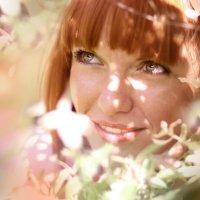 В солнечных лучиках :: LyudMilla Zharkova