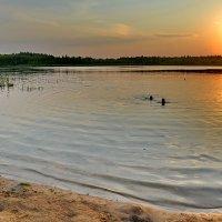 Закат на озере Крюково. :: Константин Иванов