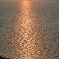 Золото... чистой воды, золото! :: Артем Калашников