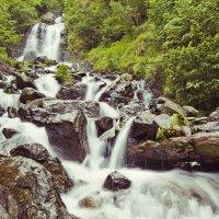 Молочный водопад :: Елена Шмелькова