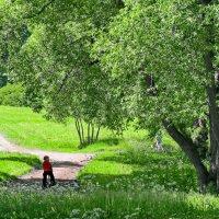 Отдельный ( нижний ) парк :: Олег Попков