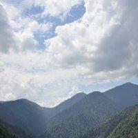 Озеро Рица.Абхазия. :: Светлана Винокурова