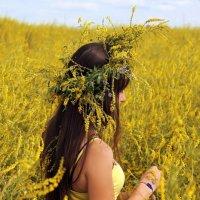 Жёлтое поле :: Nataliya Belova