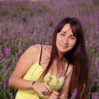 Сиреневое поле :: Nataliya Belova