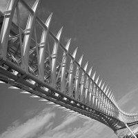 мост :: Надежда Шемякина