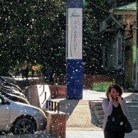 Июльский снег :: Сергей Яценко