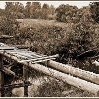Мост :: Елена Панькина