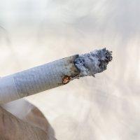 NO SMOKING :: Igor Yakovlev