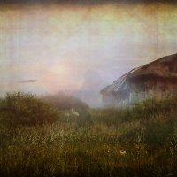 Дом на болоте. Туманы... :: Александр Шмалёв