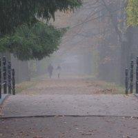 Осень в Екатерининском парке. :: Харис Шахмаметьев