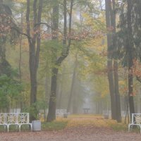 Осенний пейзаж. :: Харис Шахмаметьев