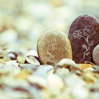 Жизнь камней :: Максим Гололобов