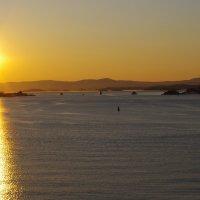 Зимний закат на бухте Осло :: Елена Назарова