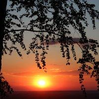 Закат в кружевах листвы. :: Наталья Юрова