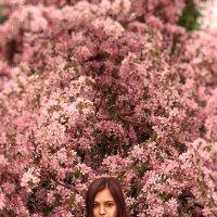 Весна13 :: Анастасия Петрова