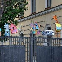 Мой город :: Анна Карасева