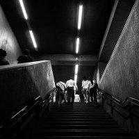 Путь наверх :: Андрей Егоров