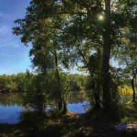 Летом у реки. :: Vadim Piottukh
