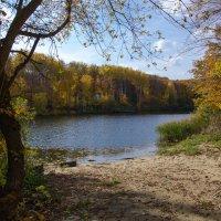 Осенний пруд :: Вера