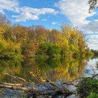 Осень на Деме :: Сергей Тагиров