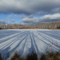 зимнее озеро :: Анна
