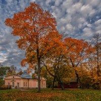 Октябрь :: Владимир Колесников