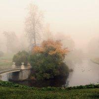 Парк в тумане :: Владимир Миронов