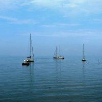 Таганрогский залив :: Елена Ом