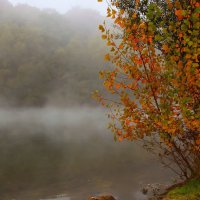 А на озере туман :: Alexander