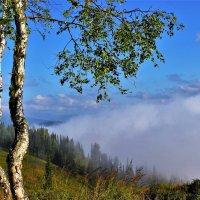 Надвигающийся туман :: Сергей Чиняев