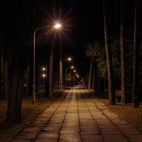 Ночь... фонари... :: Славомир Вилнис