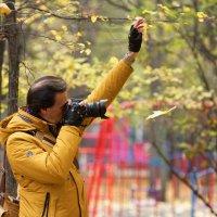 Жёлтый листик :: Константин Косов