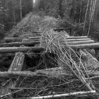 мост узкоколейки :: Вадим