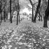 Осень на Валу :: Сергей Тарабара