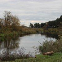река Псёл. :: Ирина Королева