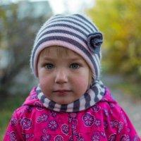 Осень) :: Виталий Гончаров