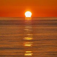 Солнце в море :: Николай Николенко